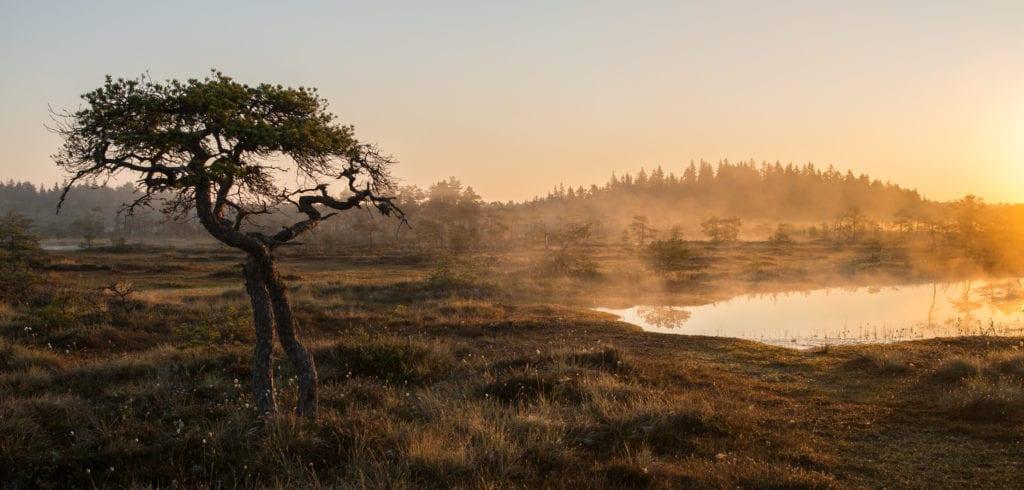 päikesetõusumatk_rabas