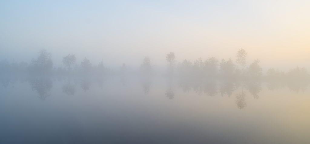 misty_bog