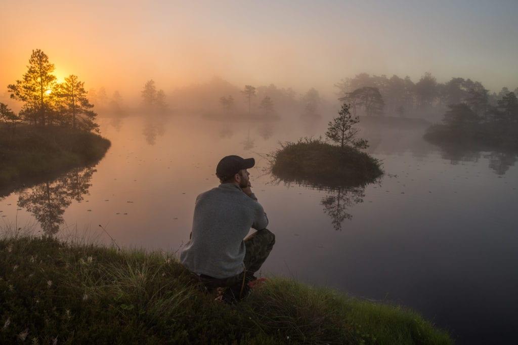 sunrise in a bog