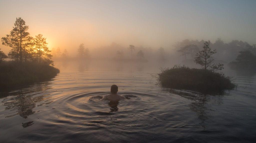 swim in a bog