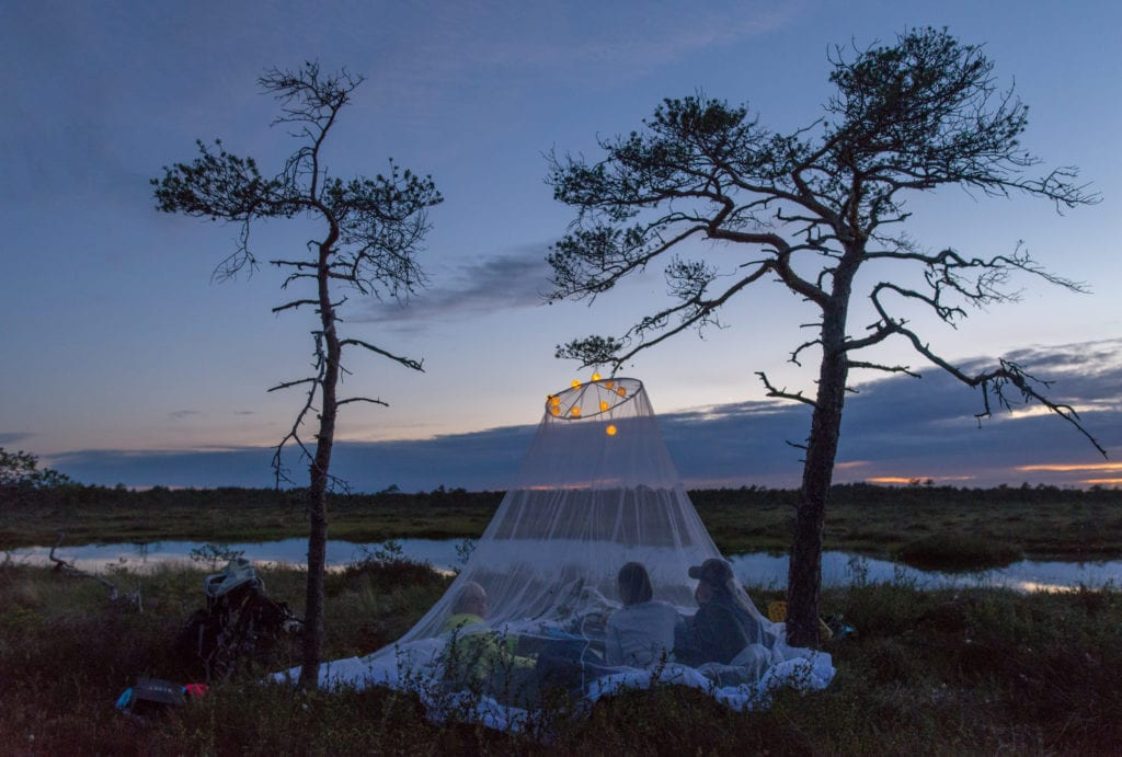 camping_in_bog