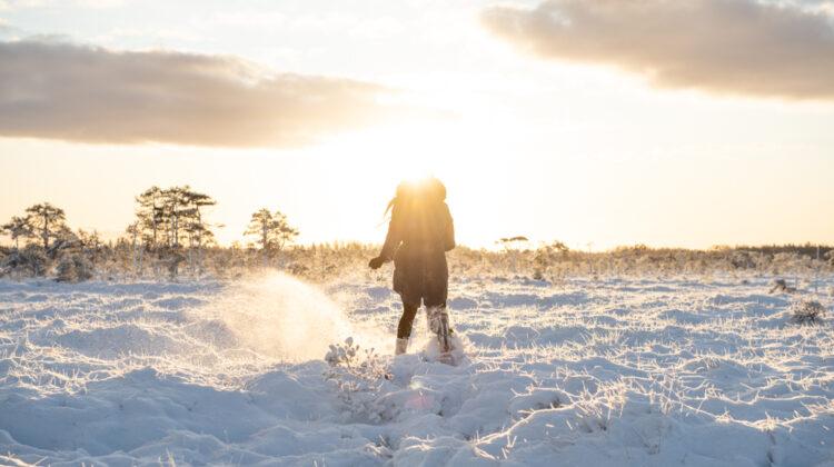 snowshoeing-in-bog
