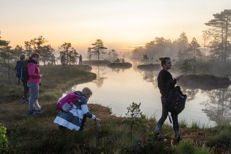 sunrise-bog-tour